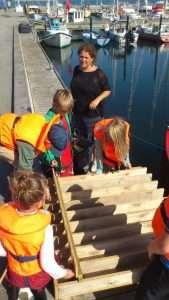 Krappevædeløb i Knebelbro havn
